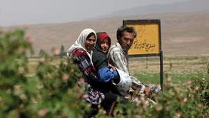 Dr. Hauschka Huile essentielle de rose d'Iran
